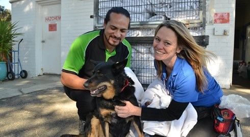Fresh Fields Hospitality Services help canines in need