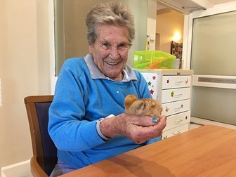 Hall & Prior Menaville Aged Care Home activity